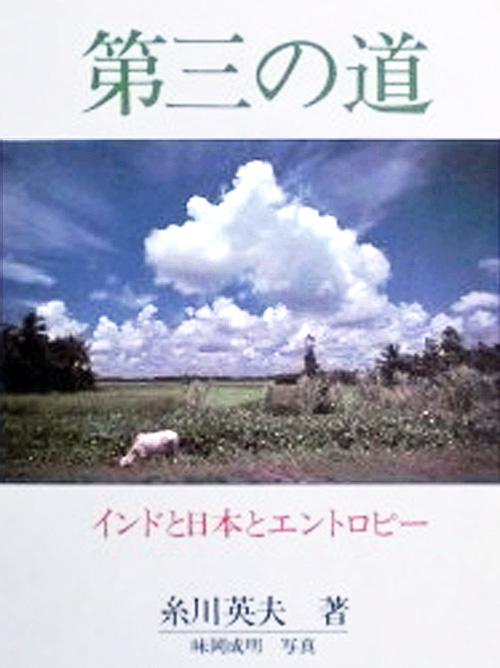 日本とカレーとエントロピー